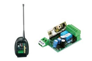product: RXS 2175 Bichannel Radio Receiver